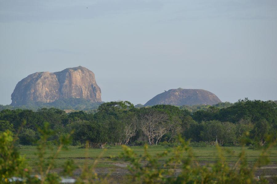 Elephant rock med landskap